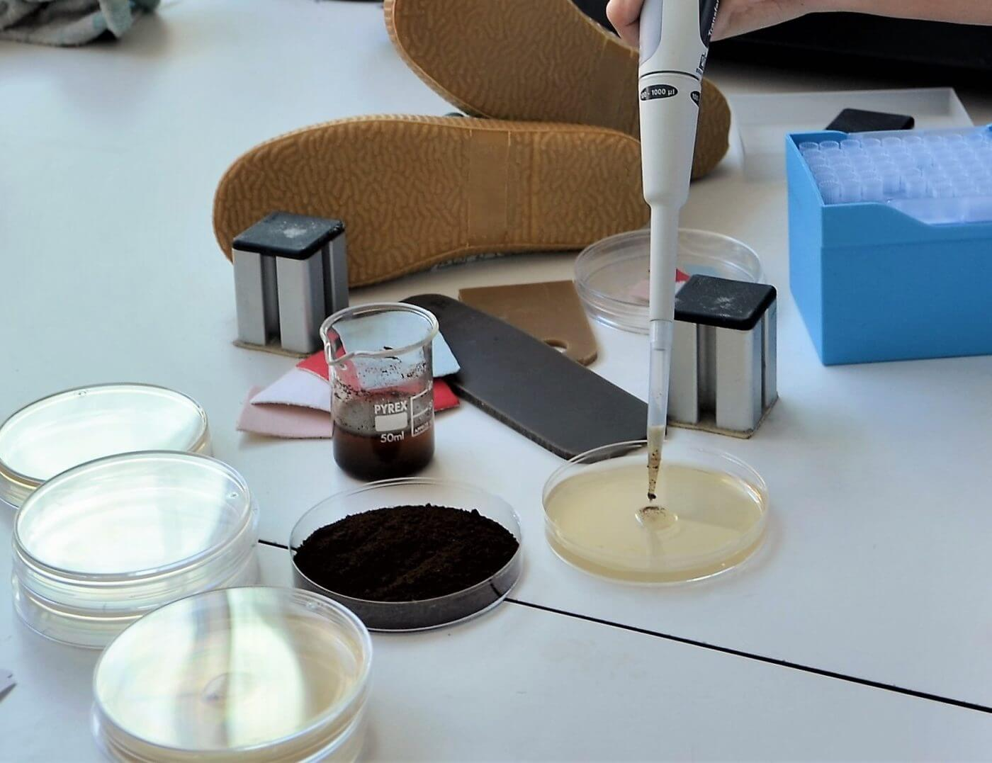 El CTCR avanza en el proyecto que persigue fabricar suelas de calzado a partir de los posos del café