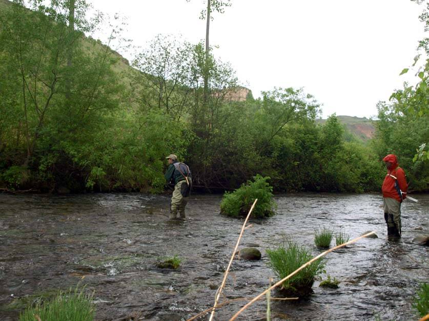 La nueva orden de pesca amplía el tramo de aguas trucheras del río Cidacos hasta Arnedo