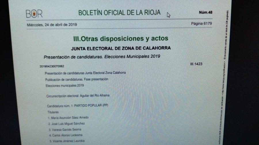 ELECCIONES BOR PUBLICACION CANDIDATURAS